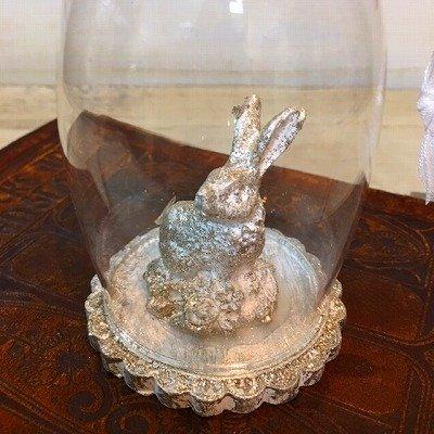 画像3: ガラスドームラビット