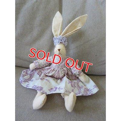 画像1: 耳長ウサギ B